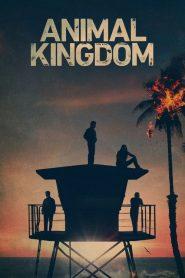 Animal Kingdom: Saison 5